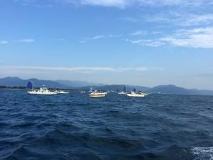 清水の釣り船がいっぱい集合