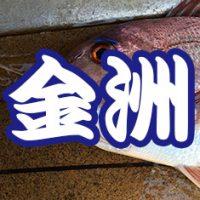 金洲釣り2016
