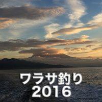 ワラサ釣り2016