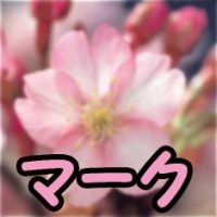 ライフジャケット桜マークのお話